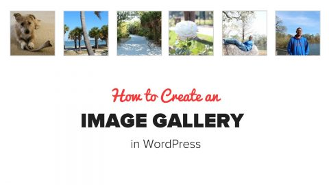 Comment utiliser la galerie d'images wordpress